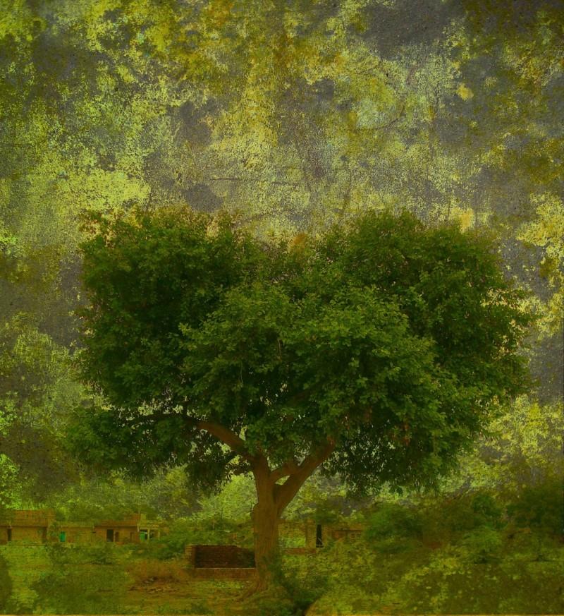grunge-green-background_fk_g_hvO